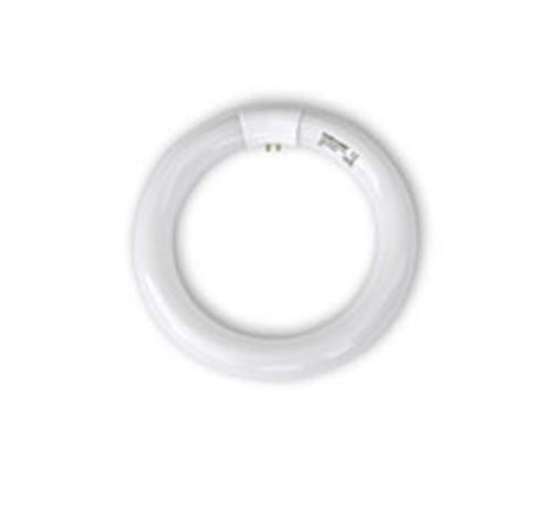 Picture of 22 watt Pluslamp Circline 350mm tube
